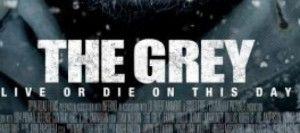 the-grey-banner
